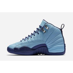 Cool jordan 12 gs purple dust women